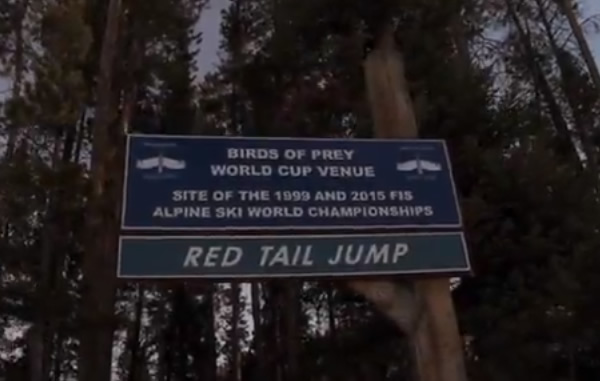 Red Tail Jump - Birds of Prey