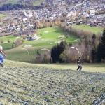 Hahnenkamm-News: Hochbetrieb am Hausberg