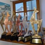 Hahnenkamm Wochenende 2014: Die Gams wartet auf den Sieger